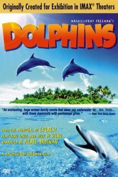 دانلود فیلم Dolphins 2000