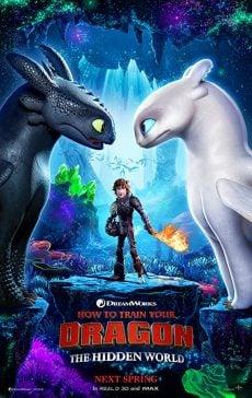 دانلود انیمیشن How to Train Your Dragon The Hidden World 2019