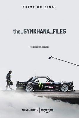 دانلود سریال The Gymkhana Files