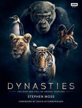 دانلود سریال Dynasties