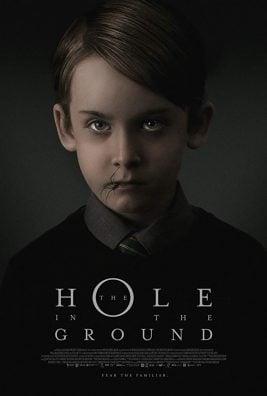 دانلود فیلم The Hole in the Ground 2019