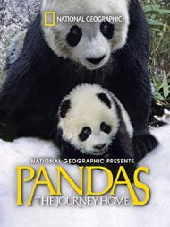 دانلود مستند Pandas The Journey Home 2014