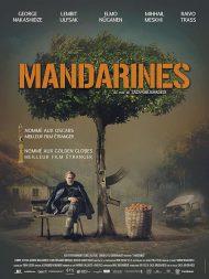 دانلود فیلم Tangerines 2013